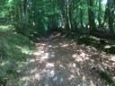Chemin de Oignies